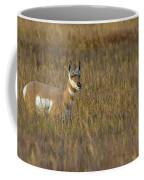 Pronghorn At Golden Hour Coffee Mug