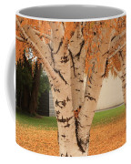 Prosser - Autumn Birch Trees Coffee Mug