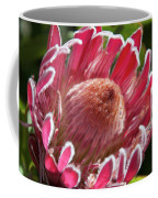 Protea Bloom Coffee Mug