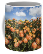 Protea Blossoms Coffee Mug