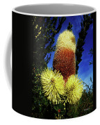 Protea Flower 5 Coffee Mug