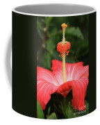 Provocative Hibiscus Coffee Mug