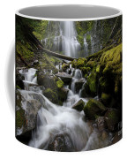 Proxy Falls Oregon 5 Coffee Mug
