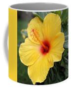 Pua Aloalo Coffee Mug