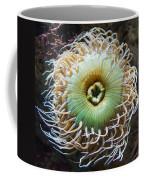 Pucker Up Coffee Mug