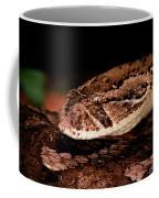 Puff Adder Bitis Arietans Coffee Mug