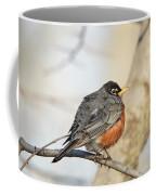 Puffed Robin Coffee Mug