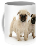 Pugzu And Pug Puppies Coffee Mug