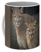 Puma Pair Coffee Mug