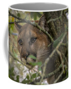 Puma Stalking Coffee Mug