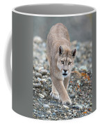 Puma Walk Coffee Mug