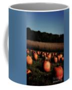 Pumpkin Field Shadows Coffee Mug