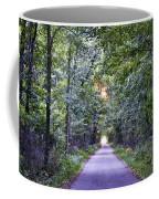 Pumpkinvine Trail In Fall Coffee Mug