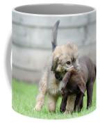 Puppies Playing Coffee Mug