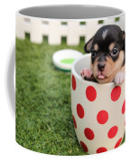 Puppy Cup Coffee Mug