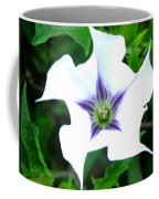 Pure Passion Coffee Mug