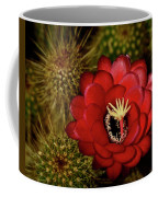 Pure Red  Coffee Mug