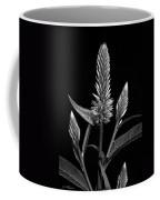 Purple - B-w Coffee Mug