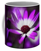 Purple And White Daisy  Coffee Mug
