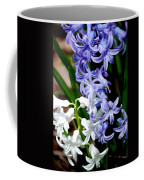 Purple And White Hyacinth Coffee Mug