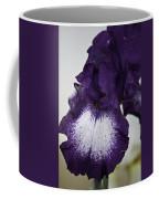 Purple And White Iris Bloom Coffee Mug