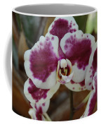 Purple And White Orchid Coffee Mug