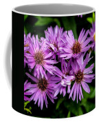 Purple Aster Blooms Coffee Mug