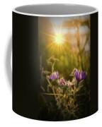 Purple Aster Glow Coffee Mug by Beth Sawickie