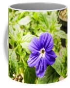 Purple Browallia Flower Coffee Mug