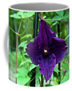 Purple Clematis Henryi Coffee Mug