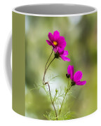 Purple Cosmos Flowers Square Coffee Mug