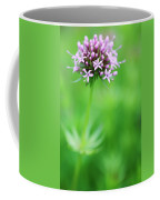 Purple Crosswort Flower Coffee Mug