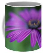 Purple Daisy Coffee Mug