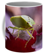 Purple Eyed Green Stink Bug Coffee Mug