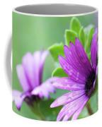 Purple Flower Closeup Coffee Mug