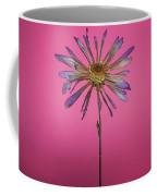 Purple Flower Pink Background Coffee Mug