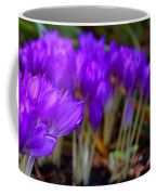 Purple Flowers Coffee Mug