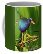 Purple Gallinule Coffee Mug