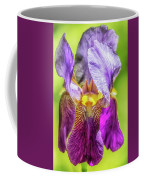 Purple Iris 2018 Coffee Mug