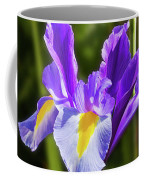 Purple Iris And Gladioli Byzantinus Coffee Mug