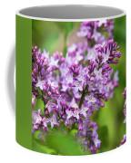 Purple Lilac Flowers Coffee Mug