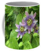 Purple Passion Vine Coffee Mug