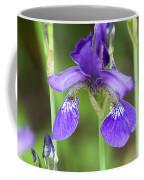 Purple Siberian Iris Coffee Mug