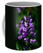 Purple Skullcap Bloom Coffee Mug