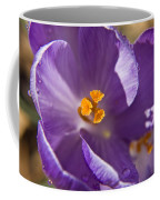 Purple Spring Crocus Coffee Mug
