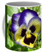 Purple White And Yellow Pansy Coffee Mug