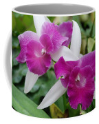 Purple White Orchids Coffee Mug
