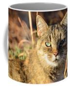Purr-fect Kitty Cat Friend Coffee Mug
