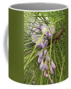Pushing Though Or Wisteria And Long Needle Pine Coffee Mug