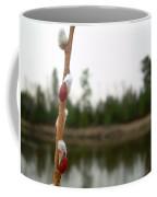 Pussy Willow Buds Coffee Mug